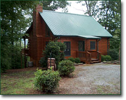 Georgia mountain cabin rental for Vacation cabins north georgia mountains